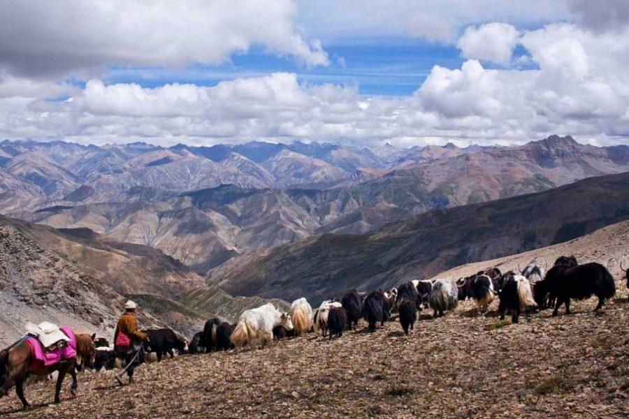 Upper-dolpo-trekking